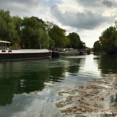 Des péniches en bord de Seine dans un environnement bucolique