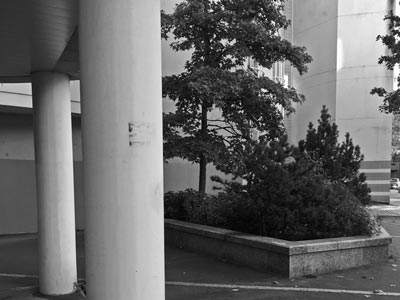 Une perspective en noir et blanc
